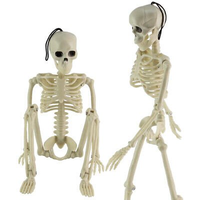 16in Life Size Jointed Skeleton Halloween Party Haunted House Decoration Props