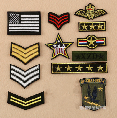 Patch Toppa Esercito Militare Military US Army Air Force Ricamata Termoadesiva