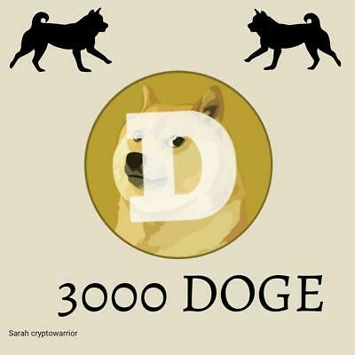 3000 DOGECOIN(DOGE) CRYPTO MINING-CONTRACT (DOGE), Crypto Currency