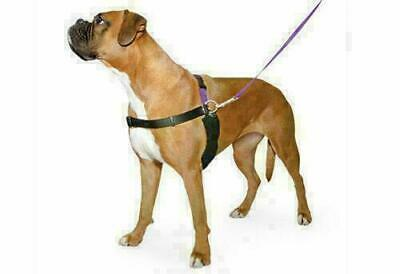 Dog Harness & Lead Set, Happy at Heels,Ancol PDL  4 Sizes SMALL - MED - LARGE-XL