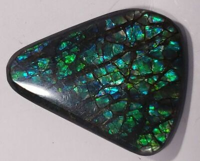 "Ammolite ""Canada's Opal"" Free Form Triangular Green Hints of Indigo StainedGlass"