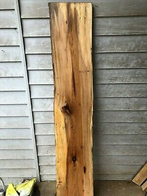Large and Thick Hickory natural edge slab