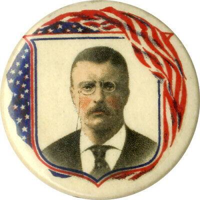 Patriotic 1904 Theodore Roosevelt Celluloid Campaign Pinback