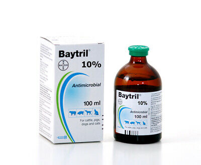 100ml BAYTRIL 10% Dogs/Pigs/Cattle exp 09/2021