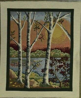 """Needlepoint Embroidery Finished Piece Birch Trees Lake River 14"""" x 16½"""""""