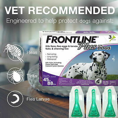 FRONTLINE Plus For Dogs Large Dog (45-88 Ibs) Flea and Tick Treatment, 3 Doses