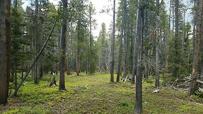 Forbes Park Lot with Water Well for sale $25,000
