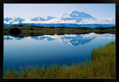 """Mt McKinley Reflected in Tundra Pond Denali NP AK"" Black Framed Art Print"