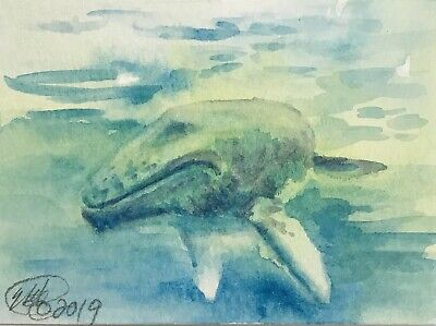 ACEO Original painting Whale Whales Ocean Originals art direct from artist USA
