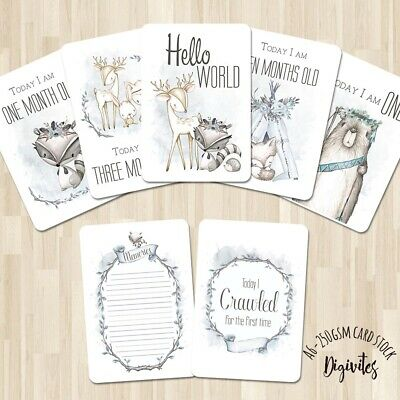 Baby Boy Milestone Cards, Boho Woodland Animals  Photo props, 40 cards, 250gsm
