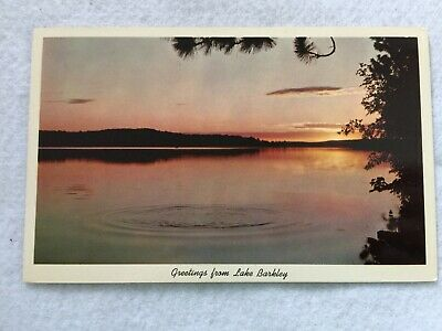 Greetings from Lake Barkley, Tennessee and Kentucky Vintage  Postcard