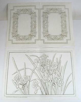 Hobbytex picture to paint x 2 flowers and daffodils/jonquils