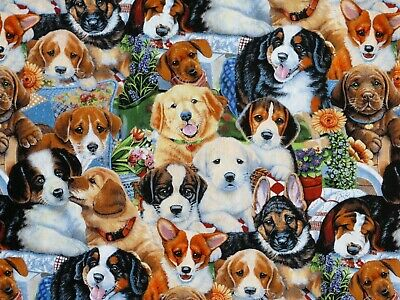 In the Country Cows Multi Breeds fabric fq 50 x 56 cm 100/% Cotton Nutex 89310-6