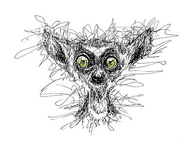 Animal digital clipart. Sublimation printable Images.