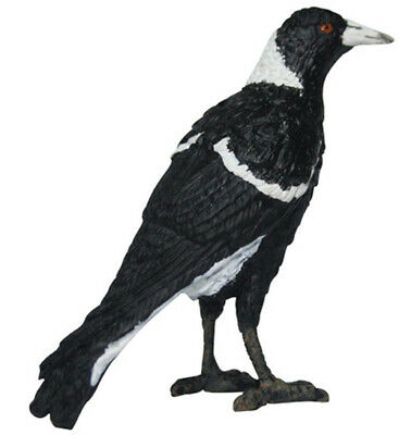NEW Science & Nature Australian Magpie Model 8cm