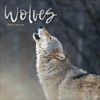 Wolves 2020 Official Square Wall Calendar