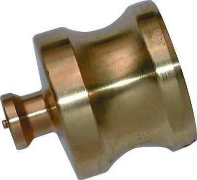 DP64B Cam & Groove - Brass Dust Plug Size 4""