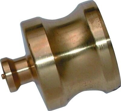 DP40B Cam & Groove - Brass Dust Plug Size 2.1/2""