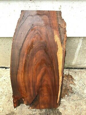 Beautiful  Red Elm  slab
