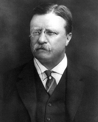 Theodore Teddy Roosevelt President Official Portrait 11 x 14 Photo Picture a