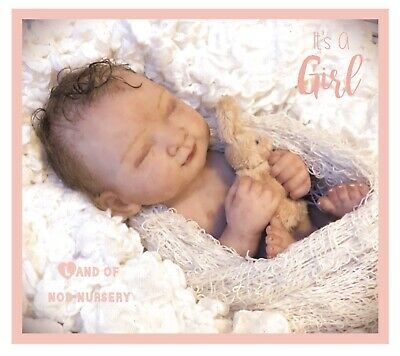 Full Body~Solid Silicone~Reborn Baby Girl~Micro Preemie~Ultra Realistic Art Doll