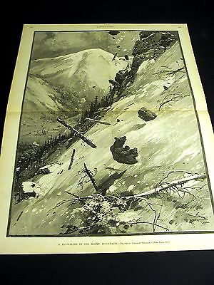 Grizzly Bear SNOW SLIDE ROCKY MOUNTAINS 1886 VERY FINE Large Folio Engraving Art