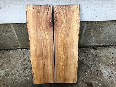 Spalted  Quartersawn Natural Edge one side Sycamore slab bookmark slabs
