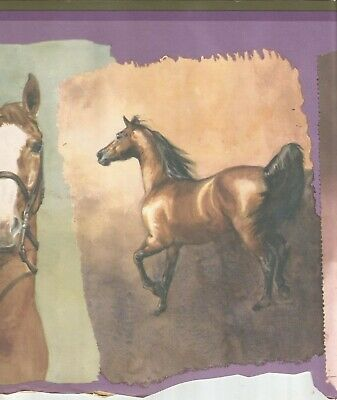 BEAUTIFUL COUNTRY HORSES /& COLT PASTURE HORSE 10 1//4 WIDE Wallpaper bordeR Wall