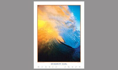 California Surfing ANO NUEVO Gallery Surf POSTER Print by Creation Captured