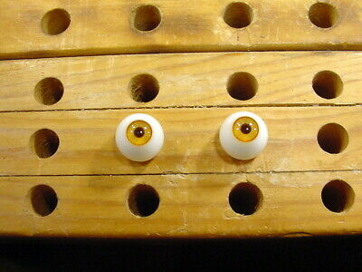 a pair vintage solid Glass Eyes size 20 mm teady bear taxidermy age 1910 Art  A5