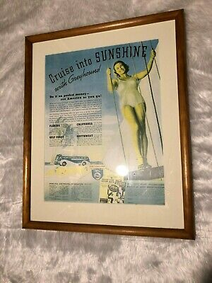 Vintage Collectors Greyhound Buses Advertisement Picture Framed