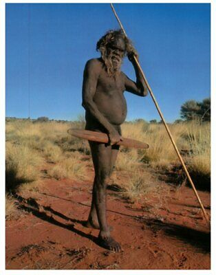 (259) Australia postcard - Aboriginal warrior men wih spear and boomerang