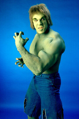 Lou Ferrigno The Incredible Hulk 24X36 Poster Print