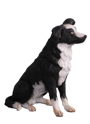 Dog Border Collie  Animal Prop Life Size Deecor  Resin Statue
