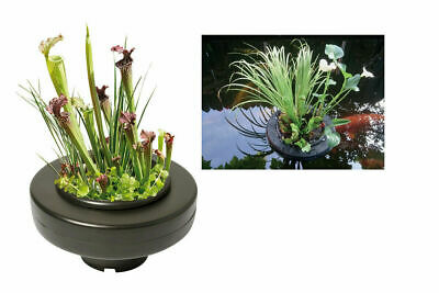 Superfish FLOATING Pond PLANT BASKET for Garden Pond Koi Goldfish Water Feature