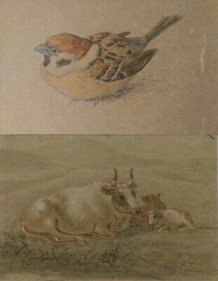 Two Paintings Unidentified Old Classic Art Cows & Sparrow Unknown 19c-20c Artist