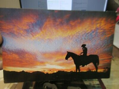 Vintage Old ARIZONA Postcard Cowboy Smoking Cigarette on Horse Silhouette Desert