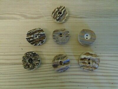 Set of 7 Thick Genuine Deer Horn Stag Vintage  Buttons 22mm