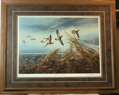 """Terry Redlin /""""Stormy Weather/""""Duck  Print Image  27/""""W x 8.5/""""H"""