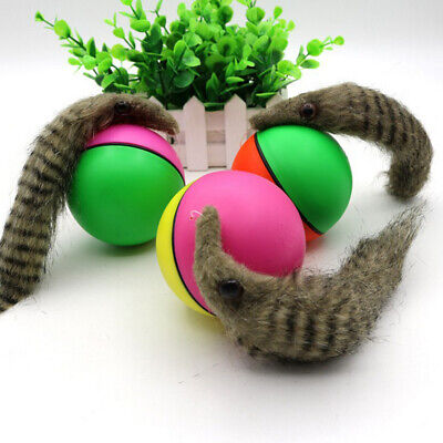 Rolling Ball Child Dog Cat Pet Weasel Motorized Appears Jump Mouse Alive Toy