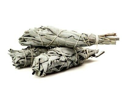 """White Sage Cali Smudge Stick ( 1 Sage Bundle,House Cleansing) Made in USA 3""""-4"""""""