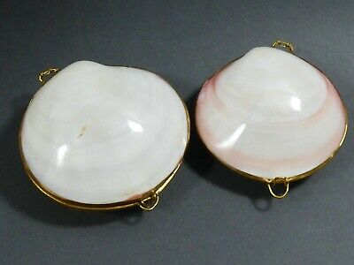 lot of 2 White Clam Sea shell Brass Hinged Snuff Pill coin Trinket Box natural