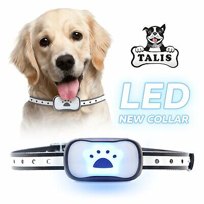 Collar Dog Bark Anti No Barking Shock Training Pet Control Rechargeable Small