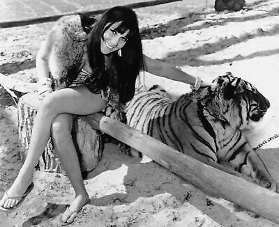 Cher and Tiger 8x10 Picture Celebrity Print