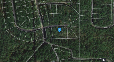 0.31 Buildable Wooded Acres in FAIRFIELD BAY - NO RESERVE