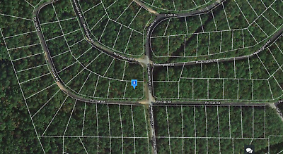 0.3 Buildable (Corner Lot) Wooded Acres in FAIRFIELD BAY - NO RESERVE