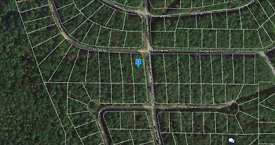 0.39 Buildable (Corner Lot) Wooded Acres in FAIRFIELD BAY - NO RESERVE
