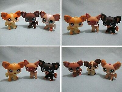 Littlest Pet Shop Lot 3 Random Chihuahua Puppy Dogs Authentic BUY3 GET 1 FREE RB