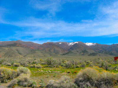 Super Rare! 10 Acre Ely, Nevada Ranch Adjoins Blm Land!  Cash Sale!  No Reserve!
