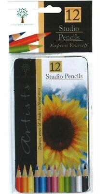 12 Studio Colouring Artist Pencils In Tin Drawing Sketch Tone Shades Art Set 893